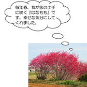 blog_img02